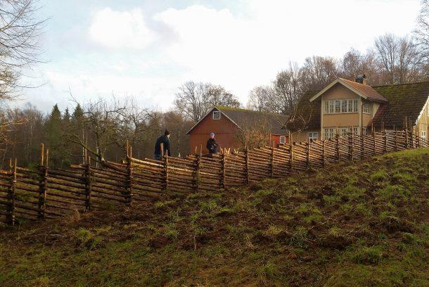 Gult sekelskifteshus på landet med röd ladugård och gärdsgård.