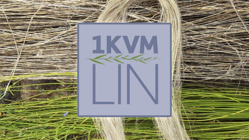 Projekt 1 kvm lin logo