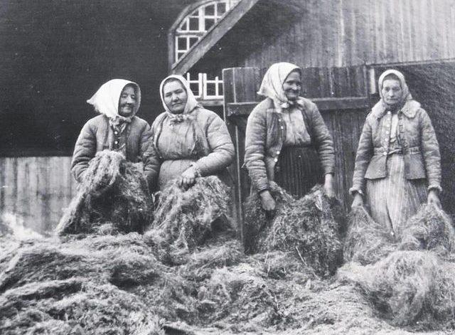 bilden föreställer fyra kvinnor som står vid dkäkten runt omkring dem en massa restprodukter från linberedning.